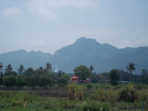 View from the train going to Udon Thani