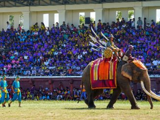 Historical re-enactment at the Surin Elephant Festival
